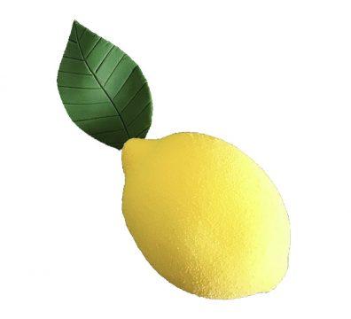 Atelier Le Citron