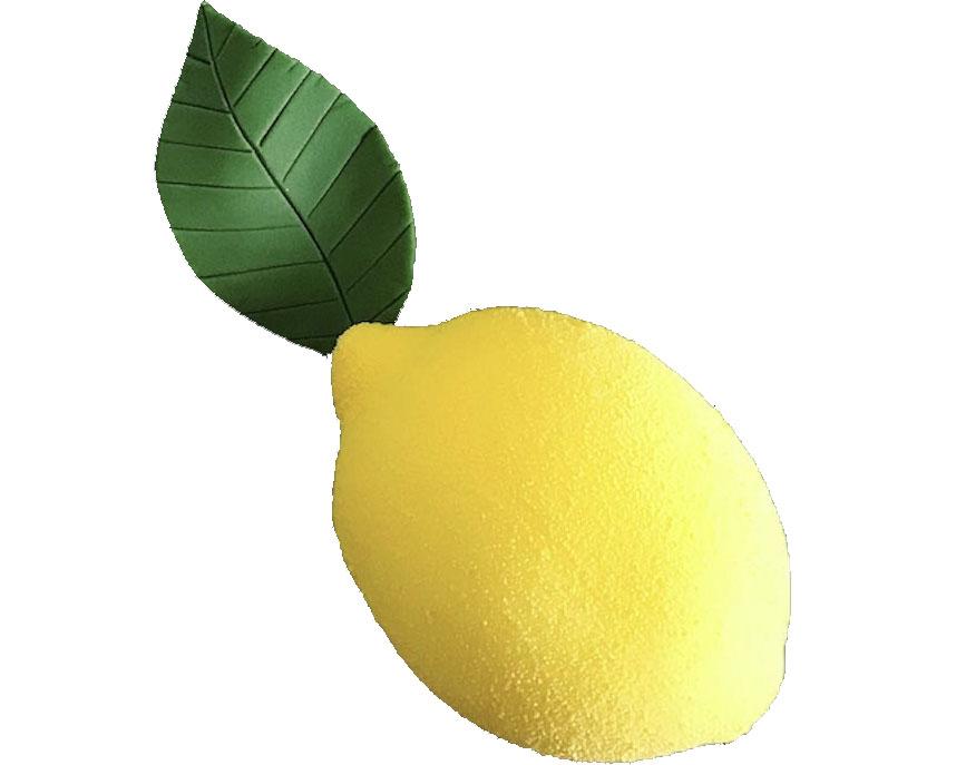 Atelier Le Citron (Adulte)